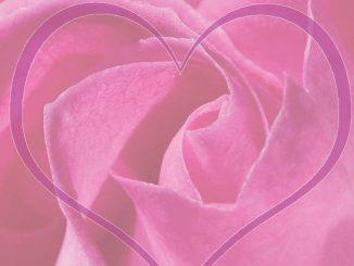 Heart-Rose